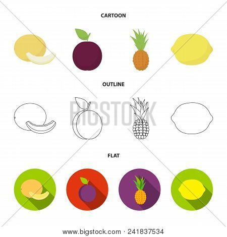 Melon, Plum, Pineapple, Lemon.fruits Set Collection Icons In Cartoon, Outline, Flat Style Vector Sym