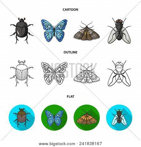 Wrecker, Parasite, Nature, Butterfly .insects Set Collection Icons In Cartoon, Outline, Flat Style V