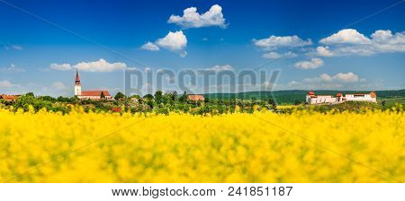 Rapeseed Field, Feldioara Fortress In Transylvania. Spring Yellow Rape Field Landscape In Brasov Cou
