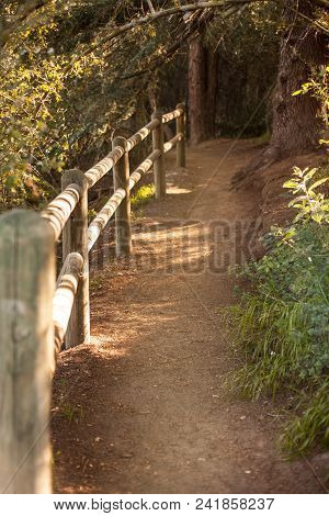 Peaceful Franklin Canyon Hike In Beverly Hills, California. The Park Comprises 605 Acres.