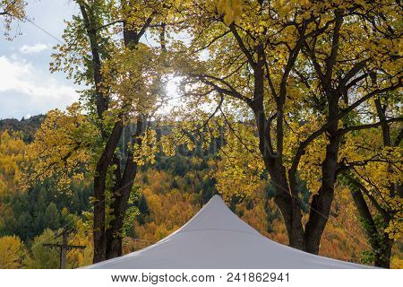 The Peaked Roof Of A Market Stall Tent Against The Autumn Foliage Of Bushland In Arrowtown New Zeala