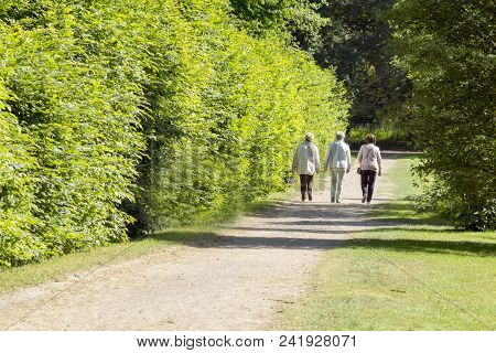 Three Seniors Go For A Walk In The Spa Park, Spring