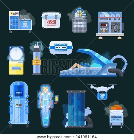 Cryonics, Chambers With Liquid Nitrogen, Human Organs For Transplantation, Flat Icons Isolated On Bl