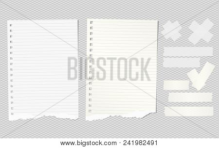 Horizontal Adhesive, Sticky Tape With Note Notepaper On Gray Background. Vector Illustration.
