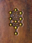 The Tree of Life, Kabbalah symbol embossed to aged brown leather poster