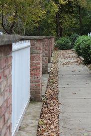 Fall Sidewalk