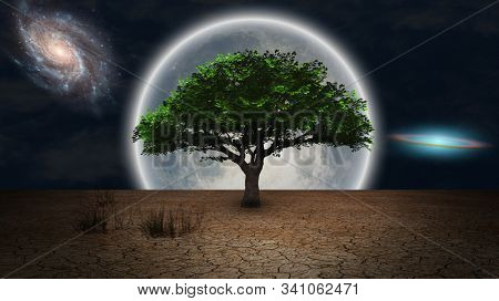 Surrealism. Green tree of life in arid land. Full moon and galaxies in night sky. 3D rendering