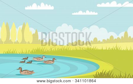 Wild Ducks Swim In Pond Flat Vector Illustration. Tranquil Mallards With Ducklings. Waterbird Family