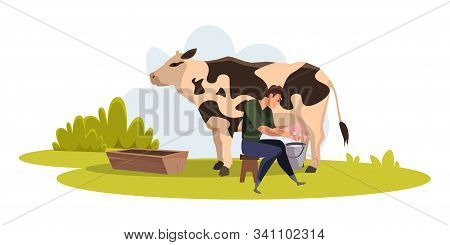 Farmer Milking Cow Flat Vector Illustration. Man Sitting Near Animal With Bucket Cartoon Character.