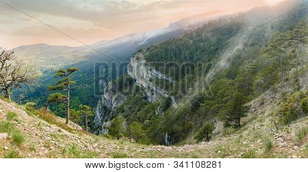 Limestone Precipitous Mountain Slope Overgrown With Forest And Single Trees On A Foreground At Sunse