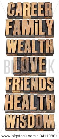 list or hierarchy of popular life values  - career, family, wealth, love, friends, health, wisdom - a collage of isolated words in vintage letterpress wood type