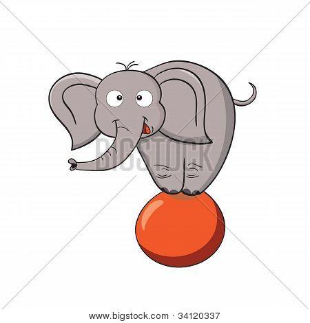Cartoon Elephant On A Ball