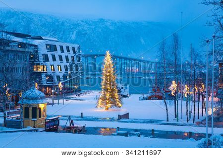 Christmas Tree in the centre of Tromso, Norway, Tromso At Winter Time, Christmas in Tromso