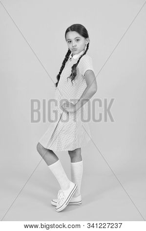 Beautiful Braids. Braided Hairstyle Concept. Cute Braids. Girl With Braided Hair Style. Hairdresser