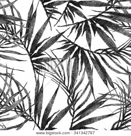 Tropical Seamless Pattern. Watercolor Chaotic Palm Leaves, Japanese Bamboo. Black And White Exotic S
