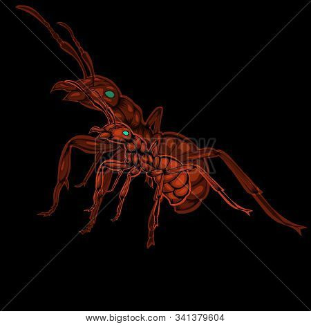 Simple Design Of Illustration Red Ants With Silhouette Ant On Black Background.