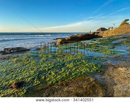 La Jolla Shores And Beach In La Jolla San Diego, Southern California Coast. Usa. Blue Waters Of The