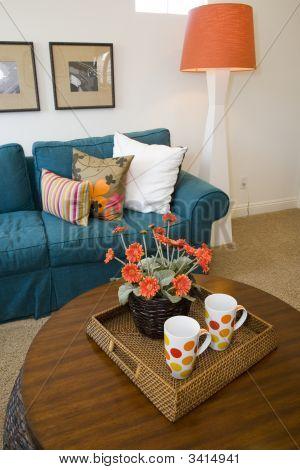 Luxury Home Living Room.