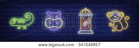 Circus Animals Neon Sign Set. Hippo, Monkey, Placard, Iguana. Vector Illustration In Neon Style, Bri