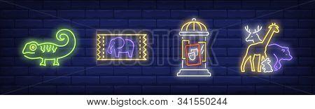 Circus Or Zoo Neon Sign Set. Iguana, Giraffe, Poster, Ticket. Vector Illustration In Neon Style, Bri