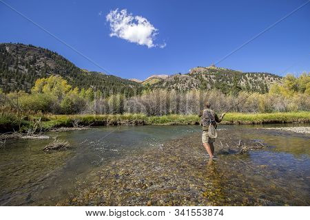 Guy Fly Fishing And Casting To A Beautiful Pool On The Lake Fork Of The Gunnison River Near Lake Cit