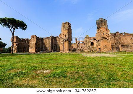 poster of picturesque view of Terme di Caracalla in Rome. Umbrella pines in vast near ruin