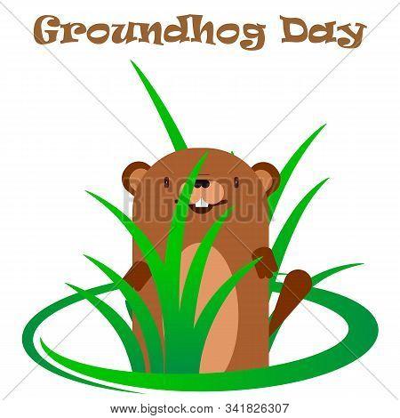 Groundhog In A Bush Of Grass, Vector Art Illustration.