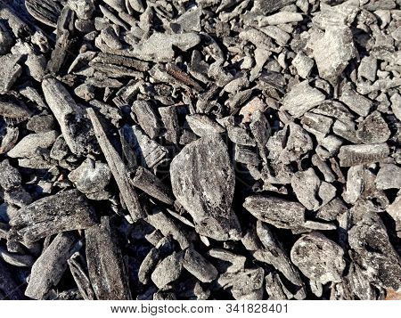Gray Ash Charcoal From Oven Background Texture, Grey Wood Ash Coal In Fireplace. Pile Of Ash & Charc