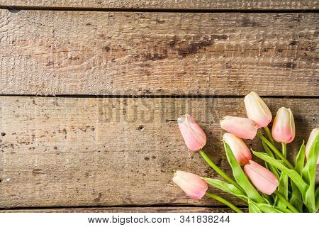 Valentine's Day Background With Tender Tulip Flowers