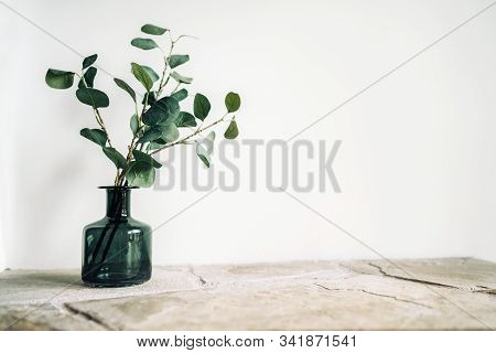 Green Tree Branch Putted Into Black Glass Vase On The Natural Stone Mantel Shelf On The White Color