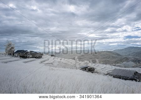 Beautiful Rice Terraces In Pa Bong Piang, The Rural Village In Chiangmai, Thailand In Infrared Photo