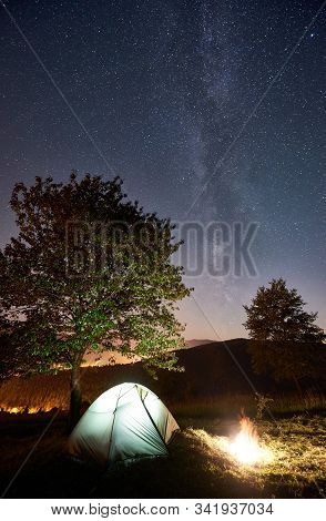 Tourist Camping Near Big Tree At Night. Illuminated Tent And Bonfire Under Amazing Night Sky Full Of