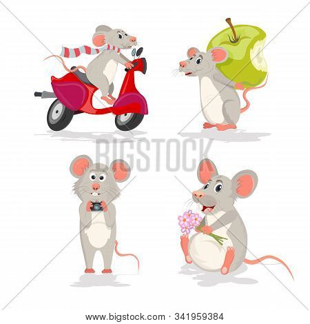 Vector Set With The Mouse Or Rat. Mouse On A Scooter, Mouse With Apple, Mouse With Camera And Mouse