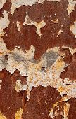 Rusty metal surface texture with peeling paint. Abstract background. poster