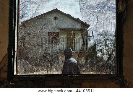 Man In Garden Window Net