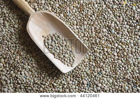 Raw Lentil With Wooden Scooper