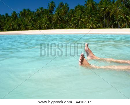Resting In Crystalline Clear Waters In Maragogi Brazil