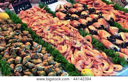 showcase of seafood in the sea market poster