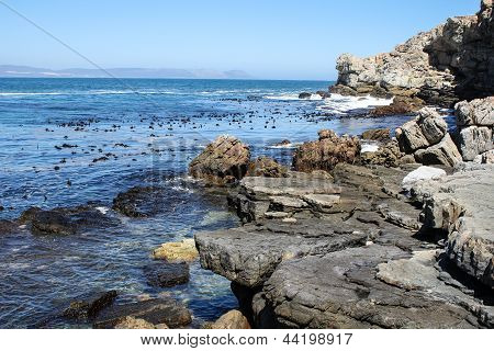 Cliffs Along South Africas Coastline
