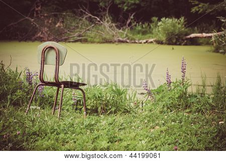 Landscape of single chair beside lake garden