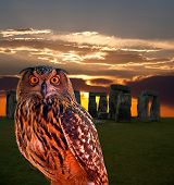 an owl and the mystery Stonehenge in England poster