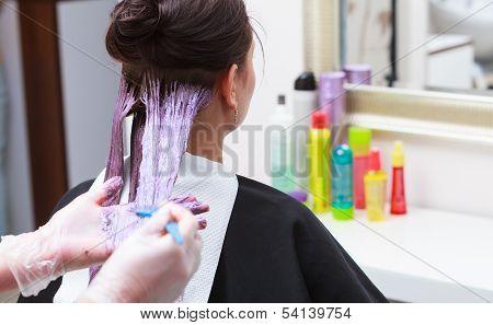 Hairdresser Applying Color Female Customer At Salon, Doing Hair Dye