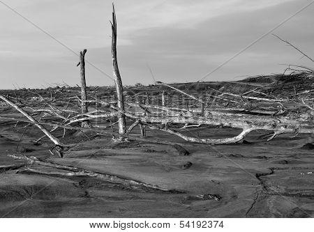 Area Damaged by Volcano Eruption 2010