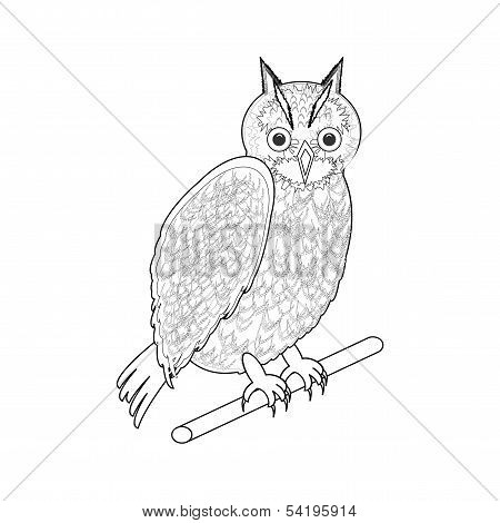 A monochrome sketch of an owl. Vector-art illustration on a white background poster
