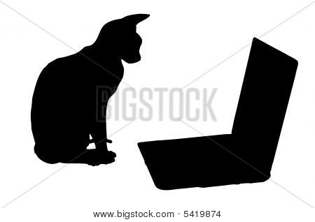 Silhouettes: Cat And Laptop