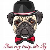 color sketch hipster serious dog fawn pug breed in a hat and bow tie poster