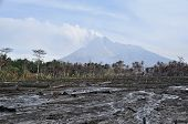 Area damaged and burned forest from lava and pyroclastic of active volcano - Merapi erupted 2010, Java - Indonesia poster