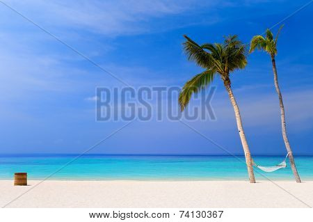 Hammock on a tropical beach - vacation background