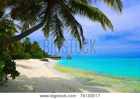 Water bungalows on beach of tropical island - vacations background