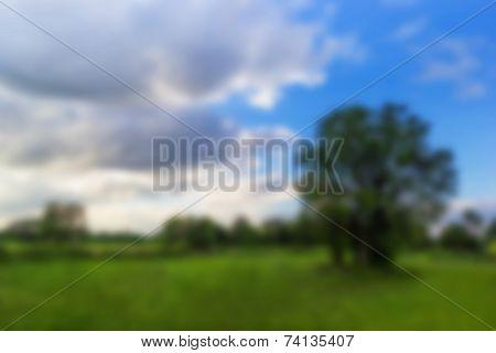 Blur Background Lanscape Shot Green Meadow